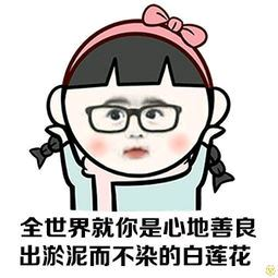 宿新市徐公店_改写